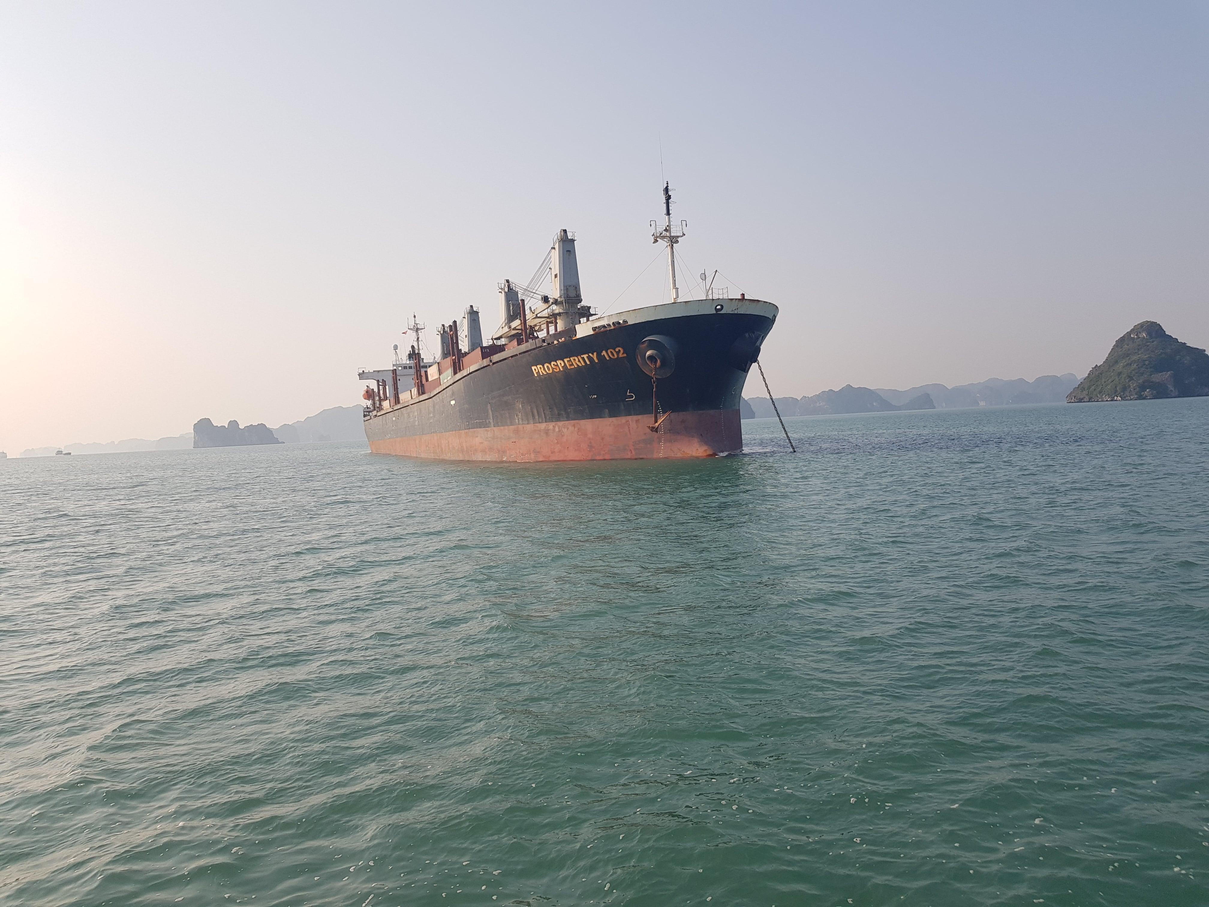 Xuất khẩu xi măng tháng 02/2020 (M/V PROSPERITY 102)