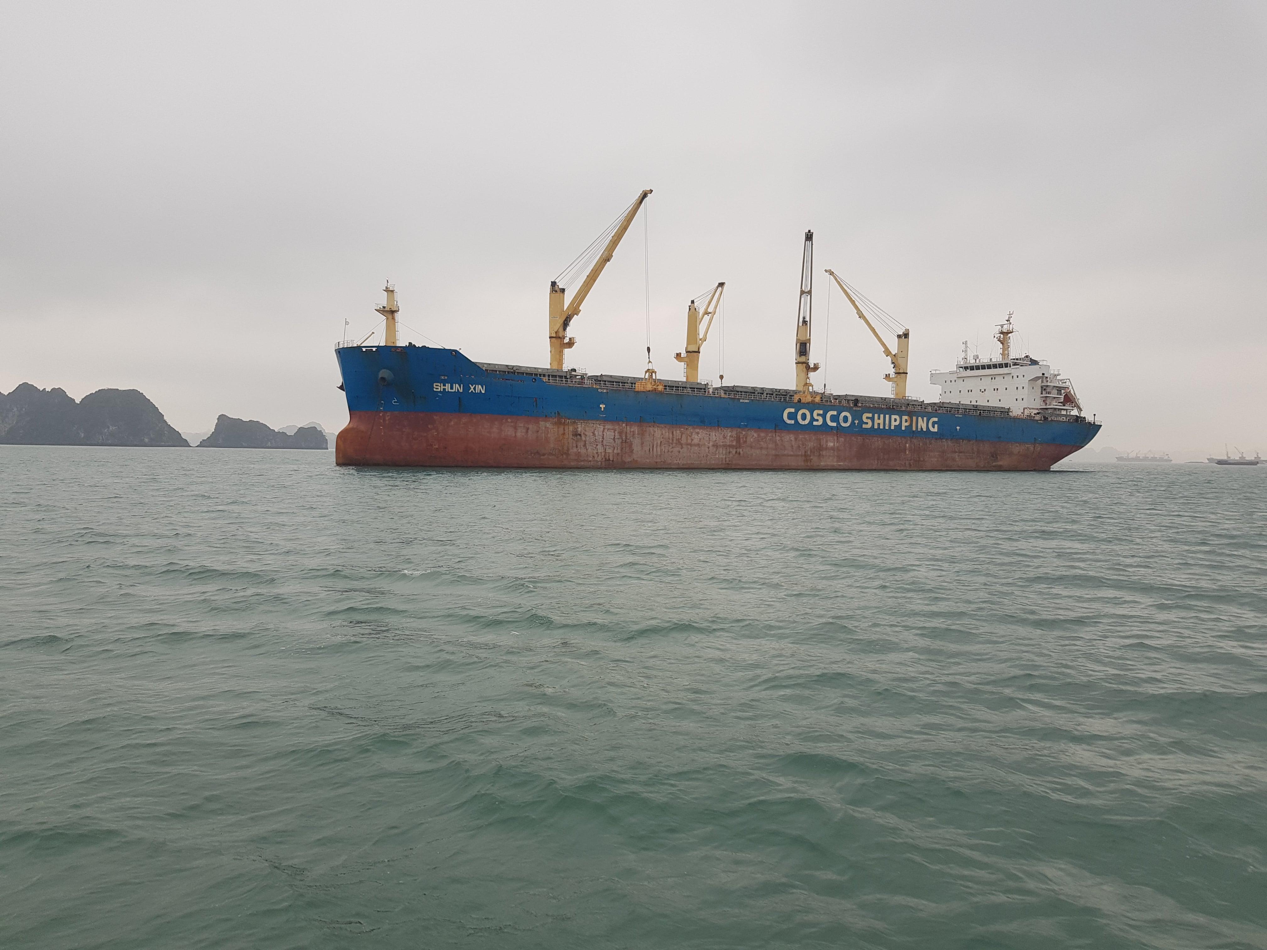 Xuất khẩu clinker tháng 02/2020 (M/V SHUN XIN)